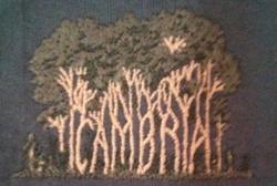 CambriaTshirt