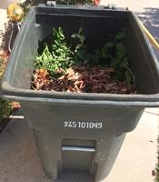 yard waste toter